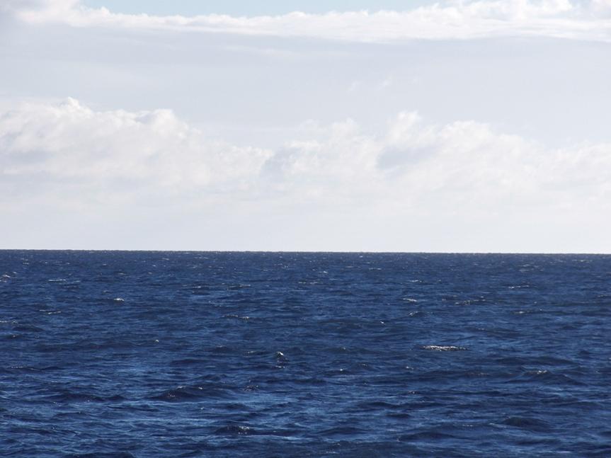open-sea