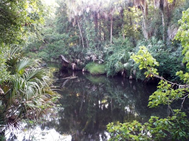 turkey-creek