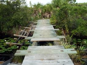 Damaged Foot Bridge at Cruickshank