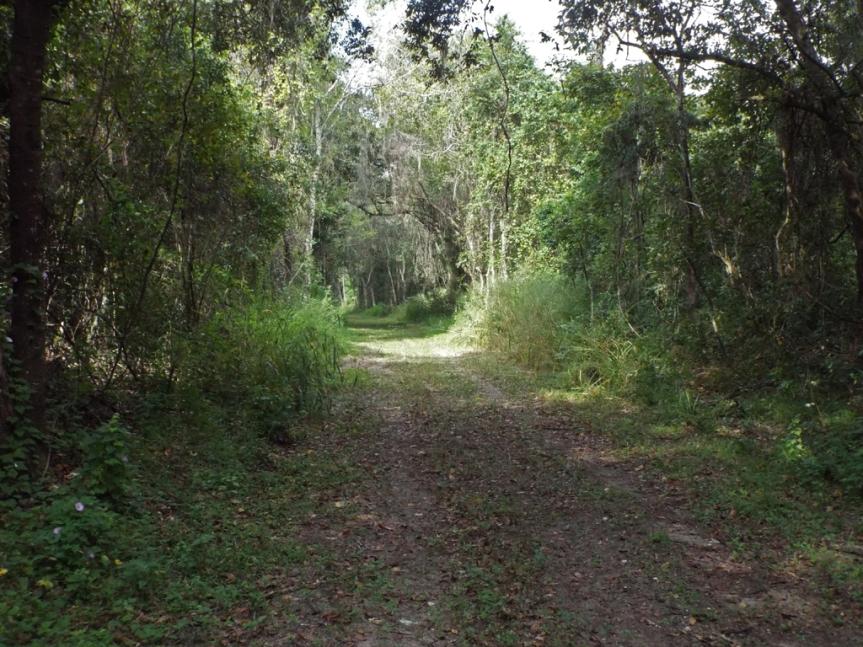 green-mountain-overlook-path