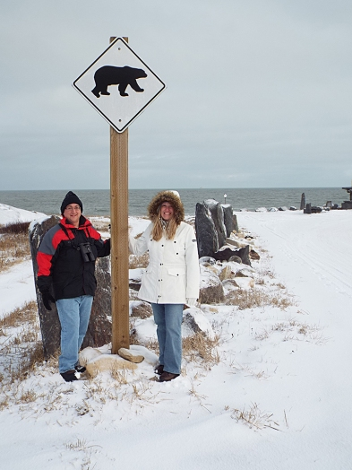 Bear crossing!