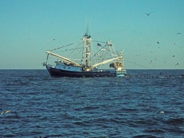 shrimp-boat1