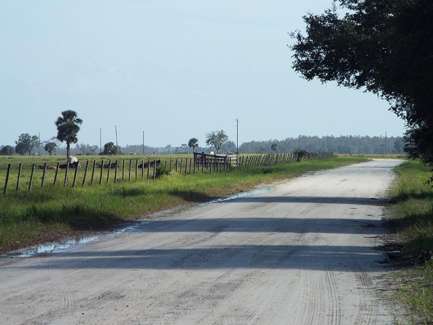 joe-overstreet-road