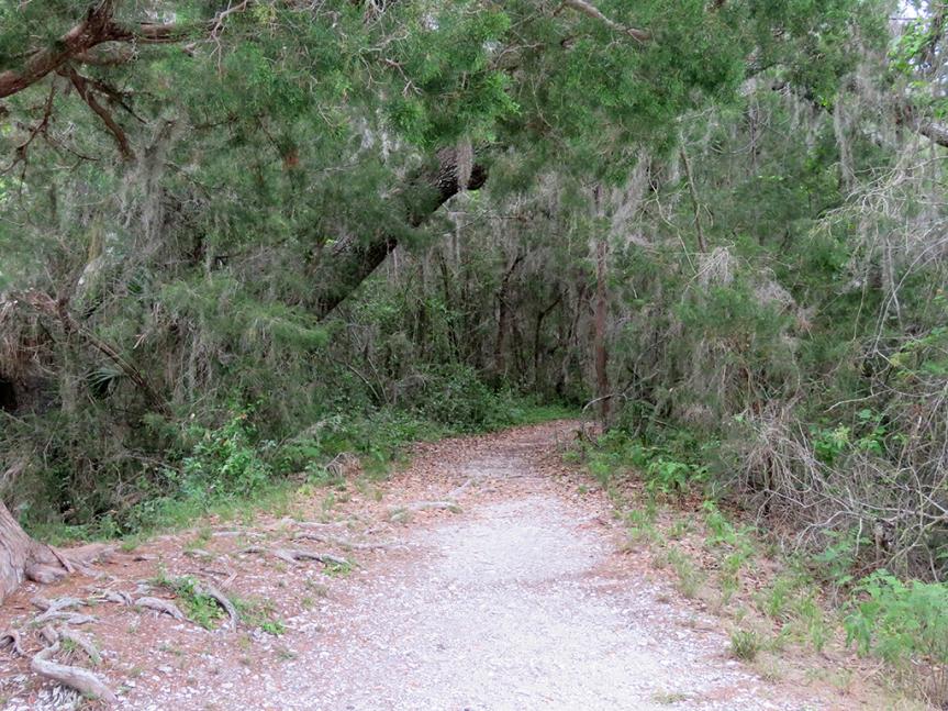 shell-mound-trail