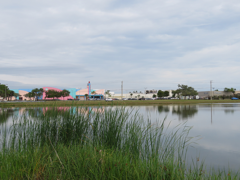 A shopping mall seen across a still pond.
