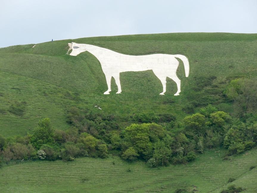 white-horse04