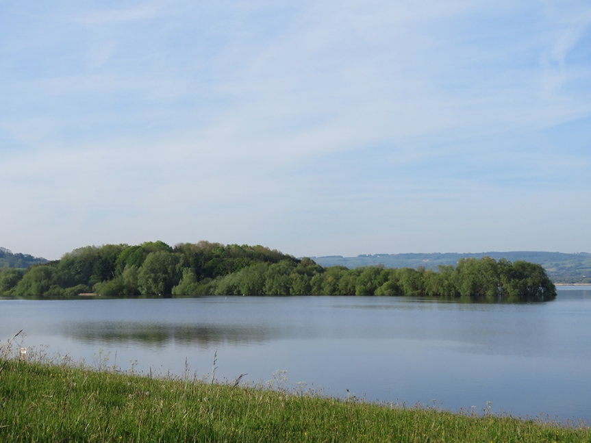 View of a lake with a tree covered island in the middle ground.