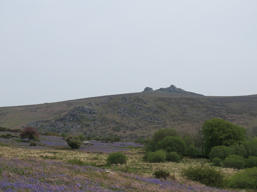 Distant rock outcrop upon a hill with scrub and grass in the foreground.