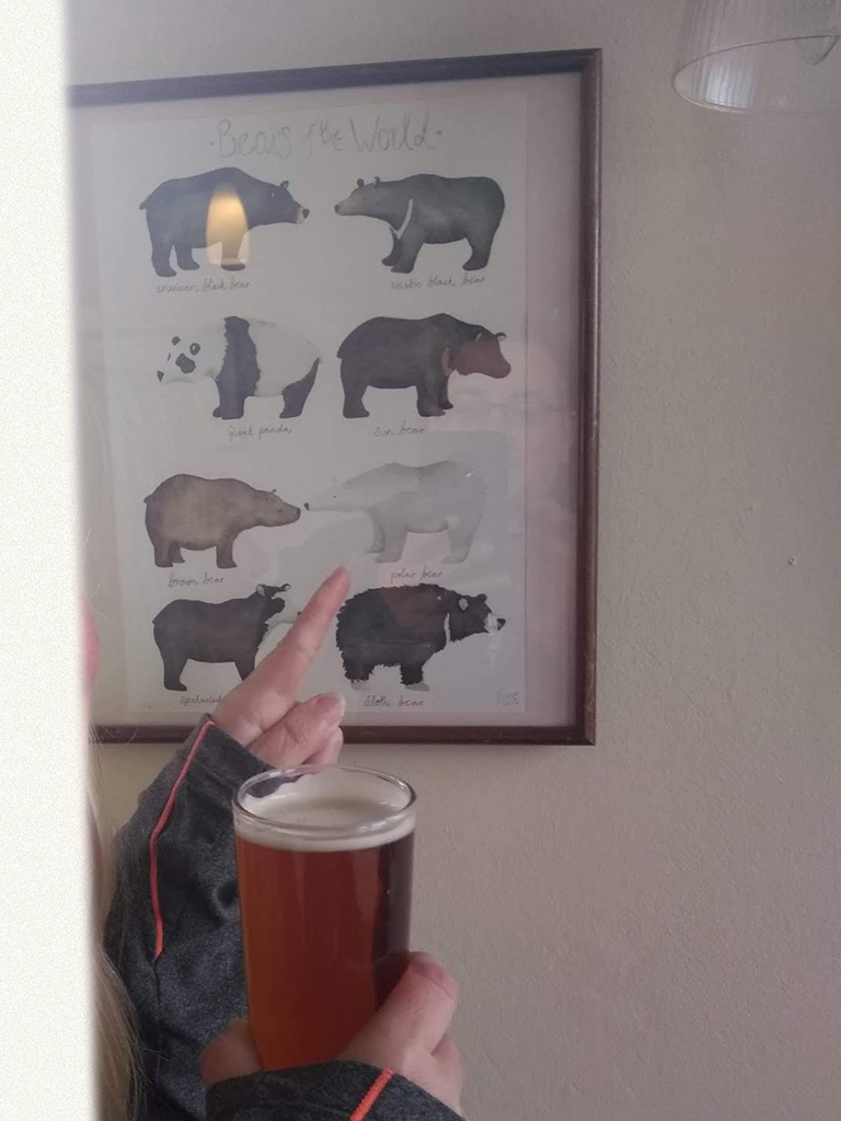 A drawing of bears framed on a wall, person pointing to Polar Bear with one hand, holding a pint of ale in the other.